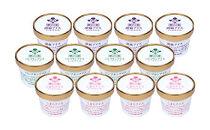 アイスクリーム詰め合わせ(12個入り)