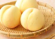BU03【約1.5kg】井頭栄果園白桃
