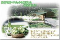 AJ04 倉敷マスカットワインスパークリングやや甘口720ml