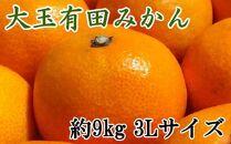 【食べごたえ十分】有田みかん大玉約9kg(3Lサイズ・秀品)