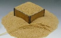 【玄米3kg】新登場の高級米 岩手県奥州市産金色の風