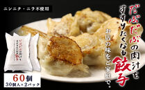 BE002だぶだぶの肉汁をすすりたくなる餃子60個(30個入×2パック)