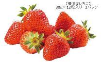 【2020年5月発送】豊浦いちご30g×12粒入り 2パック