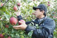 熊谷果樹園サンふじ5kg【季節限定・数量限定・11月下旬出荷開始予定】