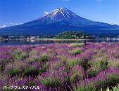 【富士河口湖町】JTBふるさと納税旅行クーポン(150,000円分)