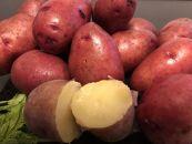 【期間限定】<網走産>秋の収穫美味レッドムーンじゃがいも10kg