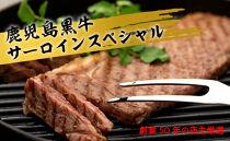 鹿児島黒牛サーロインスペシャル【創業50年の店主厳選】