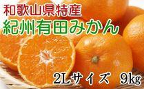 [厳選]紀州有田みかん9kg(2Lサイズ・赤秀品)