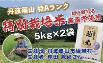 丹波篠山産 特別栽培米 越光(農薬不使用)(5kg×2袋)