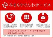 ※受付停止21.5.12※みまもりでんわサービス[固定電話コース](3カ月)