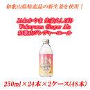 JAわかやま生姜丸しぼりWakayamaGingerAle 和歌山ジンジャーエール250ml×24本×2ケース(48本入)