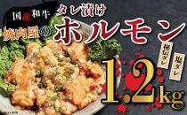 焼肉屋の国産和牛ホルモンミックス 塩味・タレ味計1.2kg