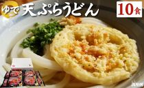 讃岐の本格派具材付き!ゆで天ぷらうどん10食