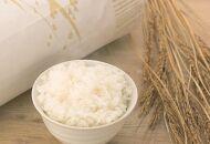 令和元年 宮城登米産 減農米「ササニシキ」10kg