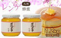 <国産>かの蜂九州レンゲ蜂蜜1.2kg【600g×2個】採蜜できる量が少ない貴重な純粋蜂蜜