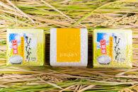 2020年秋収穫分福岡県大川市産ヒノヒカリキューブデザイン3個入り【ギフト包装】