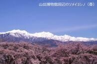 【大町温泉、葛等】JTBふるさと納税旅行クーポン(30,000円分)