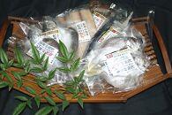 和歌山の近海でとれた新鮮魚の梅塩干物と湯浅醤油みりん干し6品種10尾入りの詰め合わせ