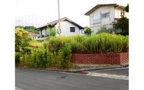 空地の草刈