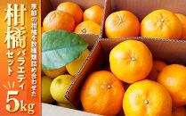 柑橘バラエティセット 5kg