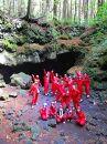 富士山の噴火でできた「青木ヶ原樹海」の溶岩洞窟を探検!