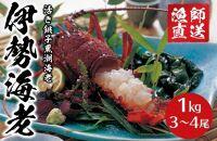 活き銚子黒潮海老(伊勢海老)1㎏(3~4尾)
