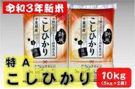 【期間限定】新米10kg令和3年産コシヒカリ(5kg×2袋)千葉県大網白里市産