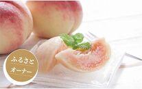 季節のフルーツと特産品オーナー制度(春夏5万円コース)
