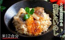 国東鯛めしの素/お米12合分