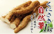 くにさきの自然薯(じねんじょ)1kg