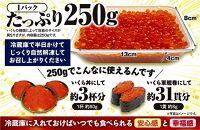 北海道海鮮紀行いくら(醤油味)【500g(250g×2)】(18000円)