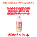 ■JAわかやま生姜丸しぼりWakayamaGingerAle 和歌山ジンジャーエール250ml×24本