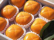 ケーズファーム 平たねなし柿 12~13個入 約3.5kg