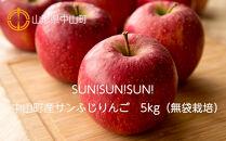 【2021年度産先行受付】SUN!SUN!SUN!中山町産サンふじりんご 5kg(無袋栽培)