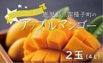 今が旬!種子島産アップルマンゴー(4L・2玉)ロケットの町からお届けします!