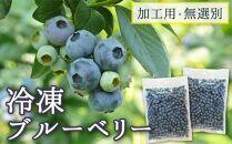 【登米市産】冷凍ブルーベリー(加工用・無選別2キロ)