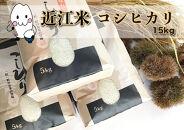 ◆農家直送滋賀県高島市産近江米コシヒカリ5kg×3袋精米済