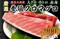 奄美大島産養殖クロマグロ(4柵セット)