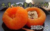 九度山あんぽ柿「蜜あんぽ」大きめサイズ10袋入り[2021年12月~発送]【無添加】