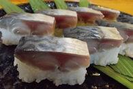 焼津さば寿司8貫2本セット小川港水揚げ肉厚