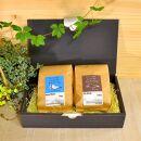 定番ブレンドコーヒー2種セット【TAISHOCOFFEEROASTER】