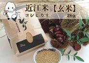 ◆農家直送滋賀県高島市産近江米【玄米】コシヒカリ2kg×1袋