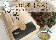 ◆農家直送滋賀県高島市産近江米【玄米】コシヒカリ10kg×1袋