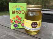 佐元養蜂場のはちみつ 国産蜂蜜 百花