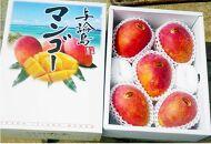 【2021年7月発送】平均糖度13度以上!アップルマンゴー2kg(4~5玉)