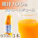 果汁100%田村そだちみかんジュース 970ml×3本