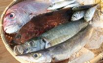小豆島産 鮮魚詰合せ約3kg