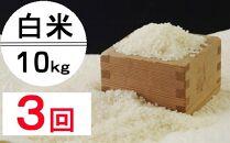 OO009 令和2年産大岸の新米(白米)10kg【3回定期便】