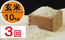 OO010 令和2年産大岸の新米(玄米)10kg【3回定期便】