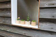 丹波篠山市産桧の植木鉢キューブ